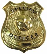 Special Officer Badge (Gold)